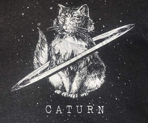 cat and saturn image