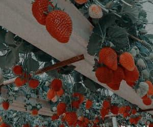 aesthetic, art, and garden image