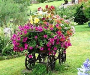 garden, flowers, and gardening image
