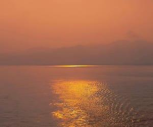 beautiful, nature, and orange image