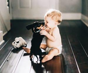 baby, dog, and style image