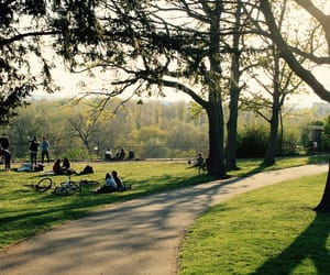 afternoon, green, and park image
