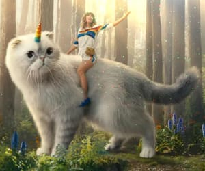 aesthetic, cat, and Taylor Swift image