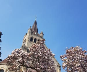 basel, faith, and flowers image