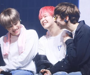 Chan, hansol, and dino image