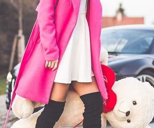 bear, coat, and fashion image