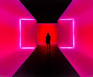 girl, room, and neon image