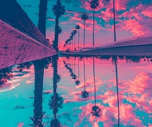 sky, water, and palm trees image