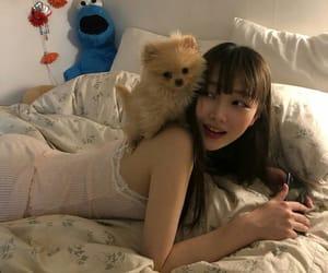 girl, ulzzang, and dog image
