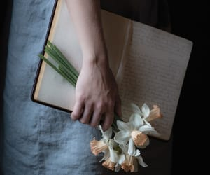flowers, book, and narcissus image