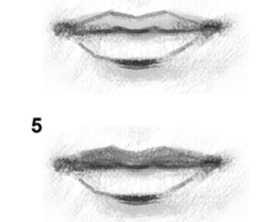 drawing and tutorial image