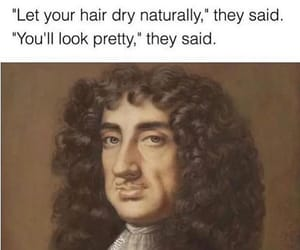 curls, hair dry naturally, and sarcasm image
