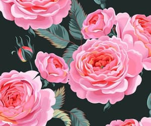 background, florals, and flowers image