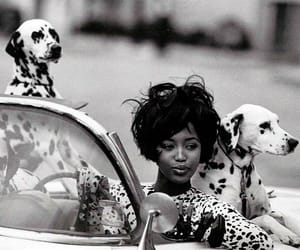 Naomi Campbell, black and white, and dog image