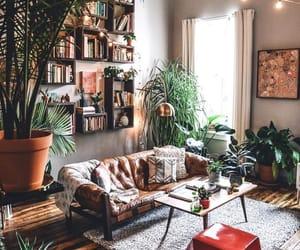home, decor, and plants image
