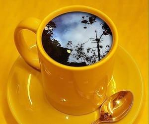 yellow and tea image