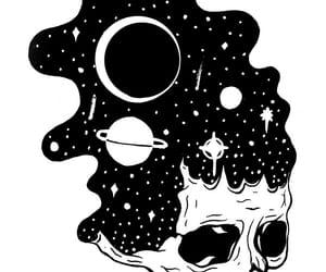 illustration and skull image