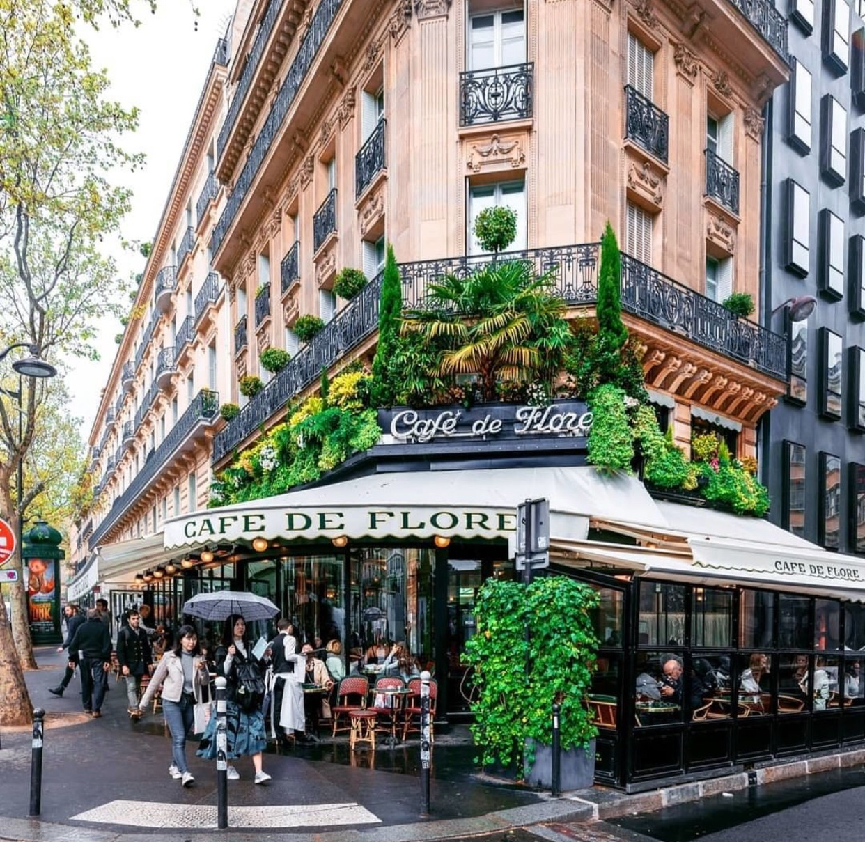 architecture, cafe, and cafe de flore image