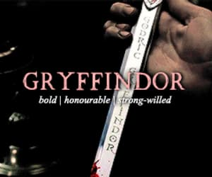 gif, gryffindor, and harry potter image