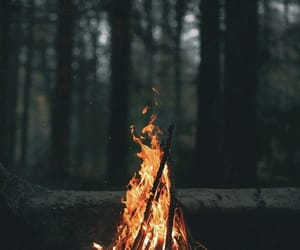 fire, forest, and wallpaper image