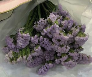 flowers, beautiful, and lavender image