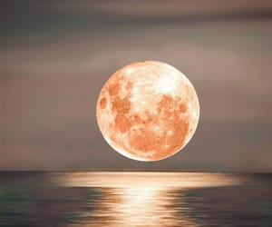 belleza, naturaleza, and Noche image