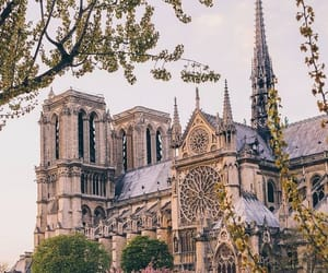 notre dame, paris, and travel image