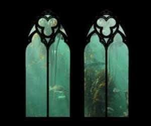 aesthetic, water, and gothic image