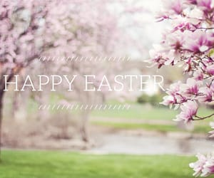 easel, easter, and cute image
