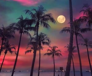 moon, sky, and beach image
