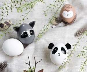 animals, diy, and we heart it image