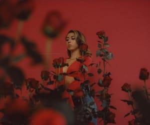 rose, kali uchis, and red image