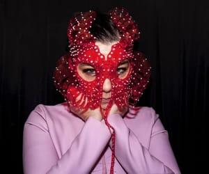bjork, mask, and fashion image