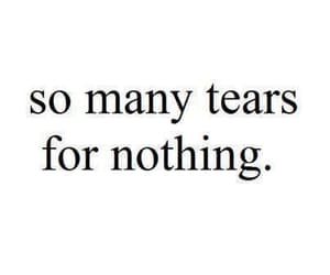 tears, quotes, and nothing image