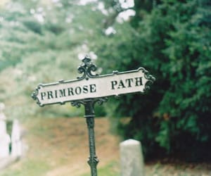 vintage and path image