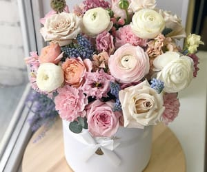 bouquet, perfect, and boxes image