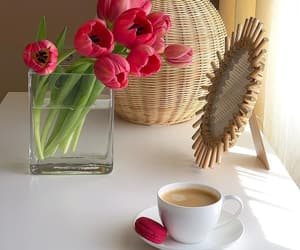 beautiful life, coffee, and cup of coffee image