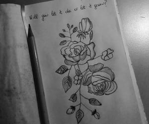 black and white, drawing, and flower image