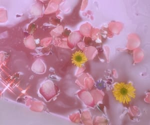 aesthetic, bath, and flowers image