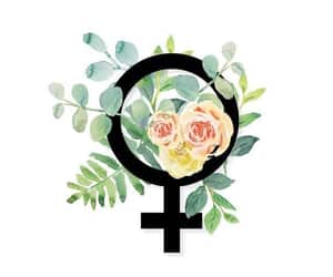article, grlpwr, and feminism image