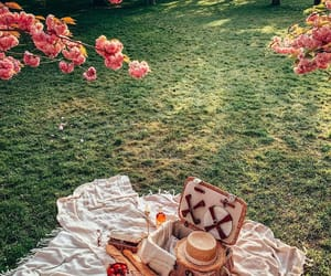 picnic, flowers, and spring image