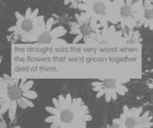 flowers, quote, and words image