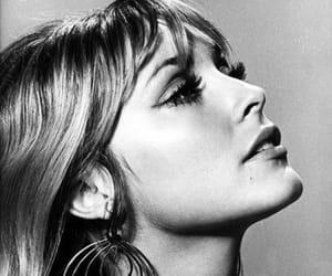 sharon tate, 60s, and actress image