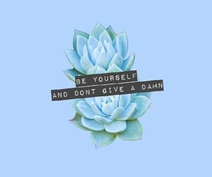 quotes, aesthetic, and blue image