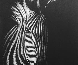 animal, white, and art image