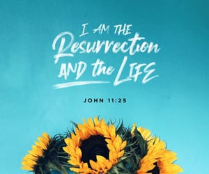 bible, flowers, and life image