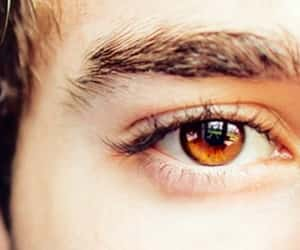 amber, brown eyes, and article image