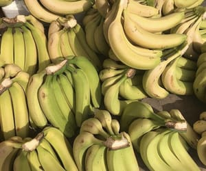 bananas and fruit image