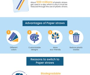 paper straws for bars image