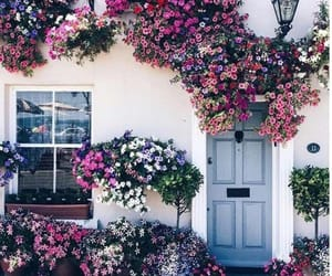 door, flowers, and dreamhouse image